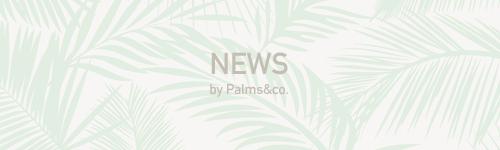 Palms&co.